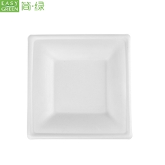 100% Biodegradable Cellulose Pulp Food Plates Disposable