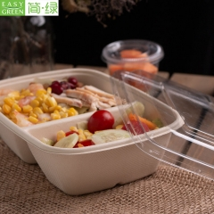 Compostable Bio Degradable Bamboo Pulp Food Container For Lunch Packaging